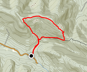 Rusk Mountain Bushwack Map