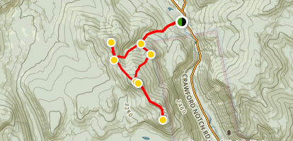 Mount Tom, Mount Field, Mount Willey, and Mount Avalon Loop Trail Map