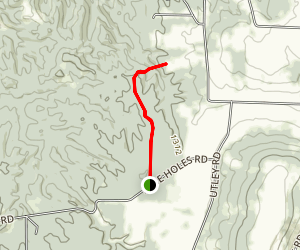 East Otto State Forest Trail Map
