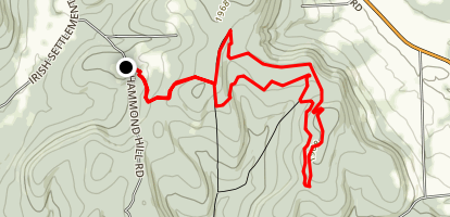 Hammond Hill and Radio Tower Loop Trail Map