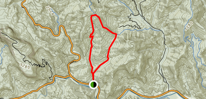 Coontree Loop Mountain Bike Trail Map