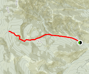 Buffalo Horn Pass from Tom Miner Campground Map