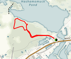 Hashamomuck Pond Map