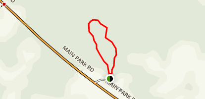 Pinelands Trail Map