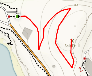 Salal Hill Trail Map