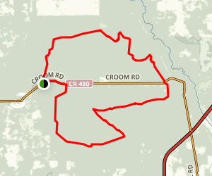 Croom Fools Run Map
