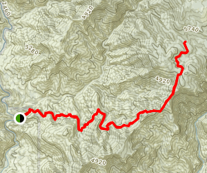 Colony Mill Trail Map