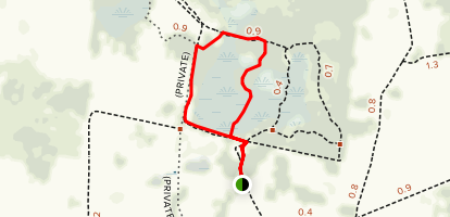 Camp Lonesome Loop Trail Map