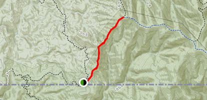 Chestnut Mountain Trail Map