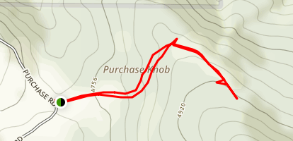 Purchase Knob Trail Map