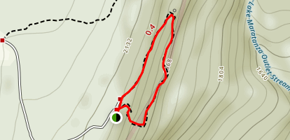 Ice Cave White Loop Trail  Map