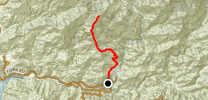 Rattlesnake Peak Trail Map