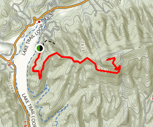 Molly's Knob Trail Map