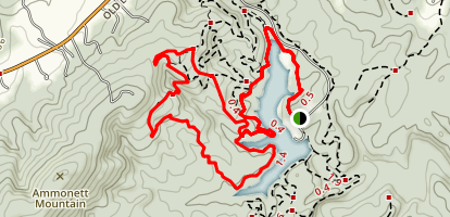 Purple Trail Map