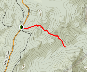 Mill Prong Trail Map