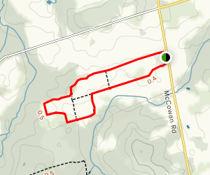 Bendor and Graves Tract East Leg Map