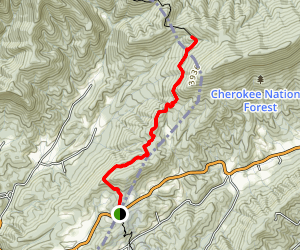 Appalachian Trail: Devils Fork Gap to Flint Mountain Shelter Map