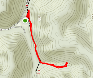 Alligator Rock Trail Map