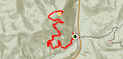 Dickey Knob Trail Map