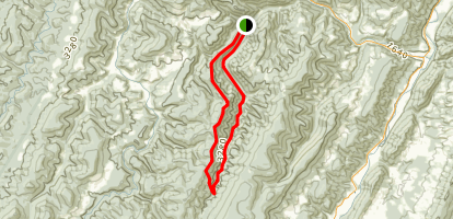 Allegheny Mountain Trail Map
