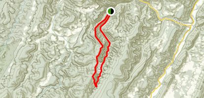Allegheny Mountain Trail - West Virginia | AllTrails