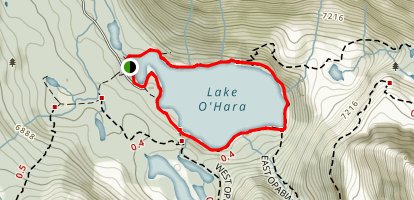 Lake O'Hara Shoreline Trail Map