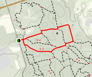 White Pine Trail Loop Map