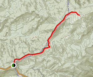 Beech Gap to Bob Bald Map