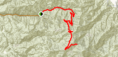 Saddleback Mountain Summit Trail Map