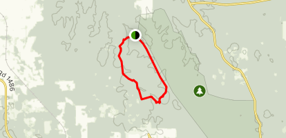 West Fork Trail to Lone Star Hiking Trail Loop Map