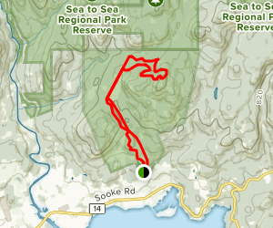 Sooke Mountain, Quimper Summit, Juniper, Kinnikinnick, and Stonecrop Trails Loop Map