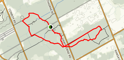 Pine Grove Forest Trail Loop Map