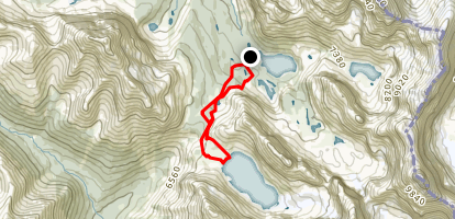 Lake McArthur and Big Larches Loop Trail Map