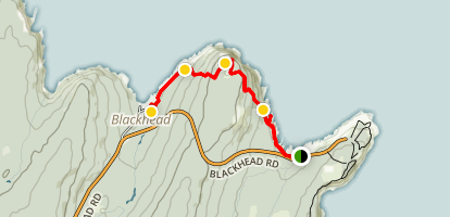 Blackhead Path Map