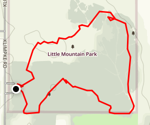 Little Mountain Park Loop Map