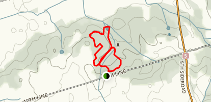 Welsh Tract - Forest of the Secret Pond Trail Map