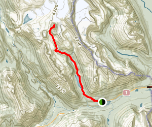 Mount Niles and Niles Meadows Map