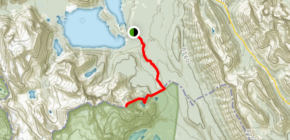 Mount Fox Route Map