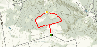 Loree Forest Loop  Map