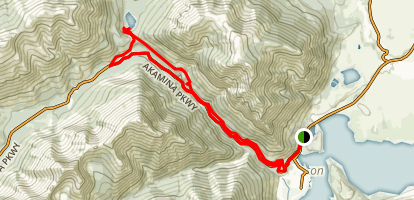 Crandell Mountain Circuit Map