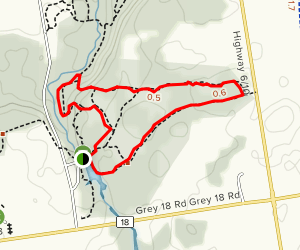 Bruce and Pine Loop Trail Map
