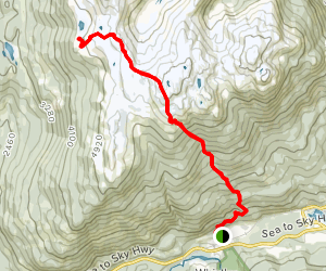 Pigs on the Wing Trail Map
