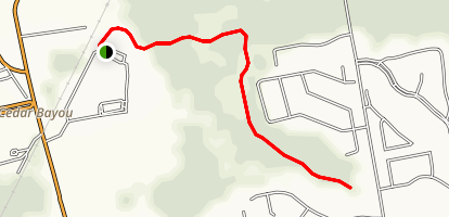 Jenkin's Park Trail Map