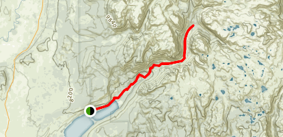 New Fork Trail Map