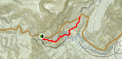 Fuzzy Bunny Trail to Phillips Connector Map