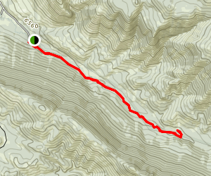 Hagen's Trail Map