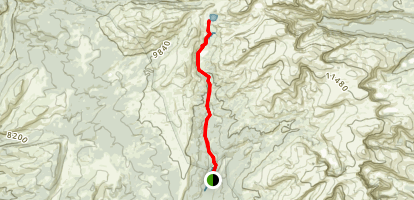 Mistymoon Trail Map