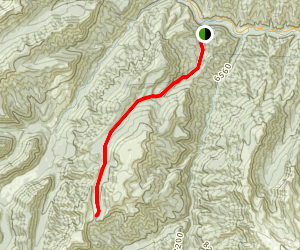 Kitty Creek Trail to Flora Lake Map