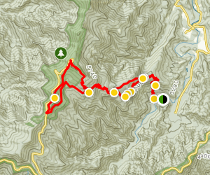 Mount Mitchell from Black Mountain Campground via Higgins Bald Map