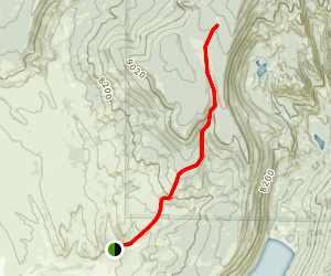 Bluff Creek Trail Map